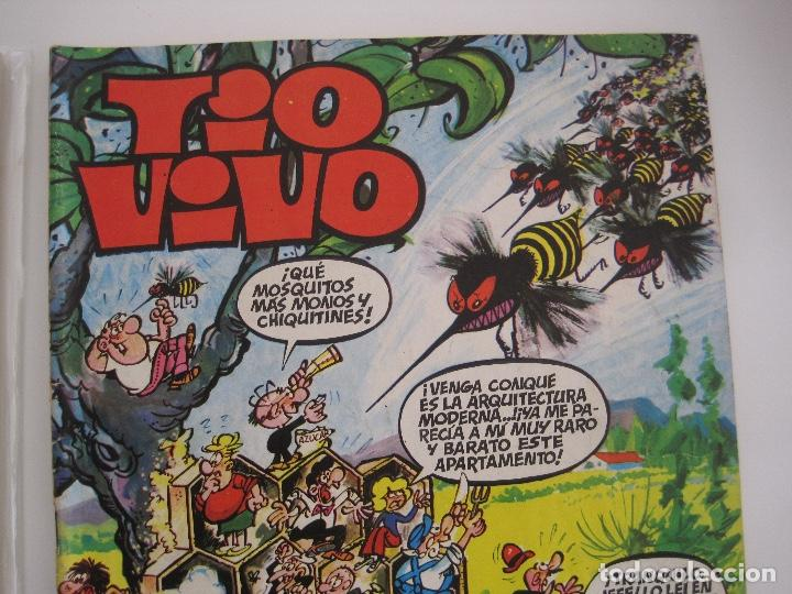 Tebeos: TIO VIVO--LOTE DE 37 EXTRA VACACIONES NAVIDAD PRIMAVERA CARNAVAL VERANO FUTBOL BRUGUERA - Foto 24 - 252601720