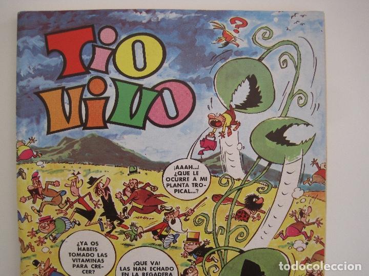 Tebeos: TIO VIVO--LOTE DE 37 EXTRA VACACIONES NAVIDAD PRIMAVERA CARNAVAL VERANO FUTBOL BRUGUERA - Foto 40 - 252601720