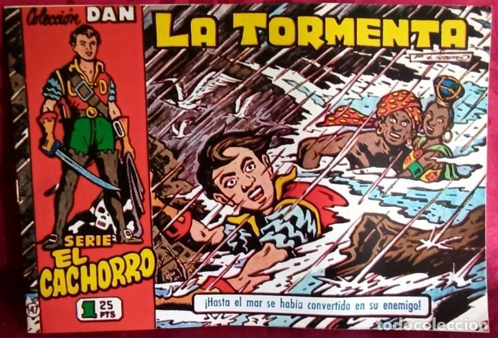 EL CACHORRO - ORIGINAL DEL AÑO 1983 - LA TORMENTA - BUEN ESTADO (Tebeos y Comics - Bruguera - El Cachorro)