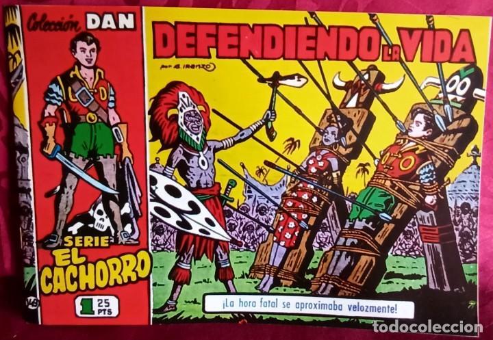 EL CACHORRO - ORIGINAL DEL AÑO 1983 - DEFENDIENDO LA VIDA - BUEN ESTADO (Tebeos y Comics - Bruguera - El Cachorro)