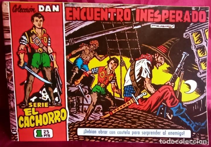 EL CACHORRO - ORIGINAL DEL AÑO 1983 - ENCUENTRO INESPERADO - BUEN ESTADO (Tebeos y Comics - Bruguera - El Cachorro)