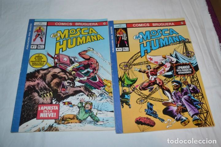 Tebeos: La MOSCA HUMANA / The Human Fly - COMICS BRUGUERA - Núm. 2, 3, 4, 5, 6 y 7 - Buen estado ¡Mira! - Foto 7 - 254911565