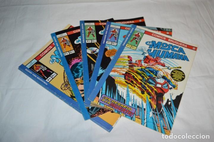 LA MOSCA HUMANA / THE HUMAN FLY - COMICS BRUGUERA - NÚM. 2, 3, 4, 5, 6 Y 7 - BUEN ESTADO ¡MIRA! (Tebeos y Comics - Bruguera - Otros)