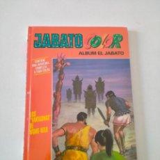 Tebeos: EL JABATO COLOR NÚMERO 22 EDICIÓN 2010 EDITORIAL PLANETA. Lote 260554230