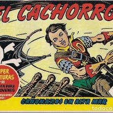 Tebeos: BRUGUERA. EL CACHORRO REEDICION. 169.. Lote 271338583
