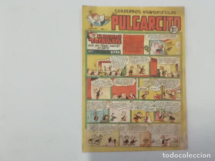 PULGARCITO - Nº 204 - CUADERNOS HUMORÍSTICOS - BRUGUERA - ORIGINAL AÑOS 50 (Tebeos y Comics - Bruguera - Pulgarcito)