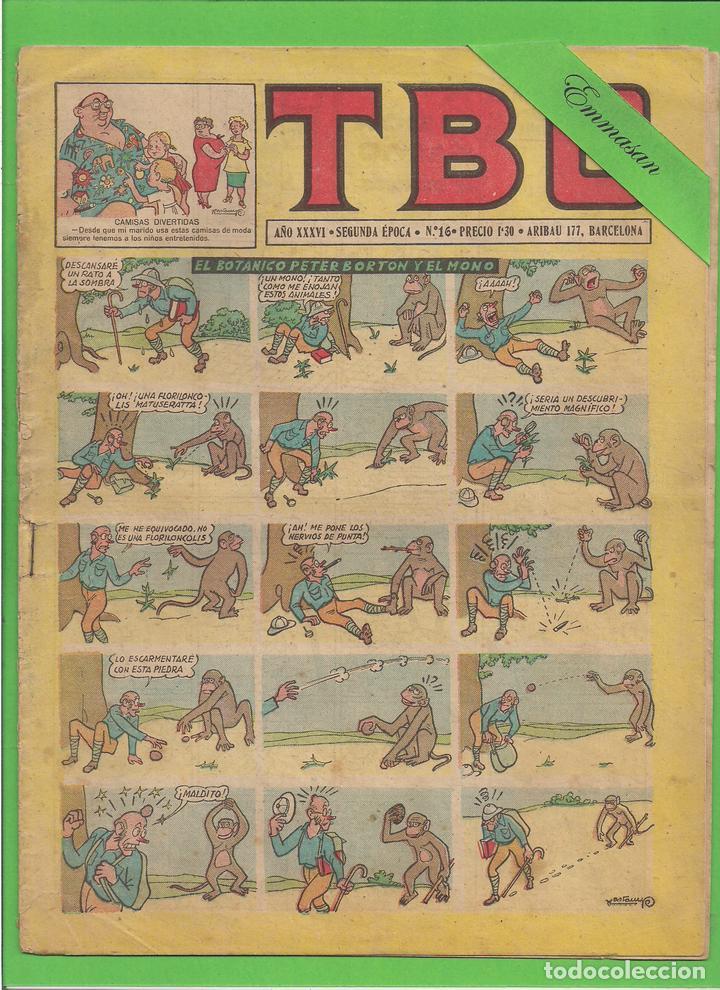 TBO - Nº 16 - EL BOTÁNICO BORTON Y EL MONO - BUIGAS - (1952). (Tebeos y Comics - Buigas - TBO)
