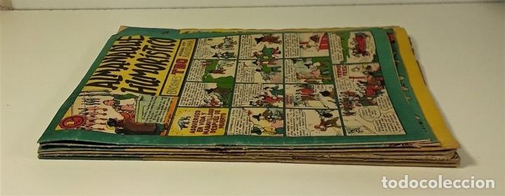 Tebeos: EDICIONES TBO. 7 EJEMPLARES. EDIT. BUIGAS. BARCELONA. 1928/1954. - Foto 3 - 167806653