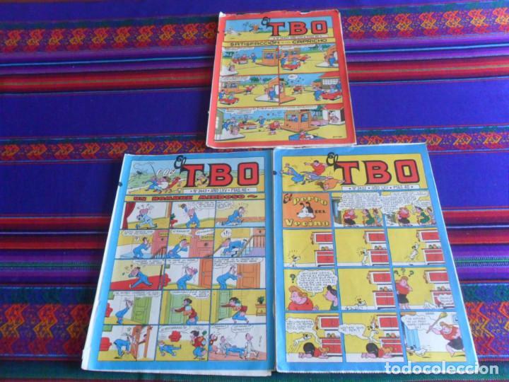 EL TBO NºS 2432, 2443 Y 2446. 40 PTS. 1981. (Tebeos y Comics - Buigas - TBO)