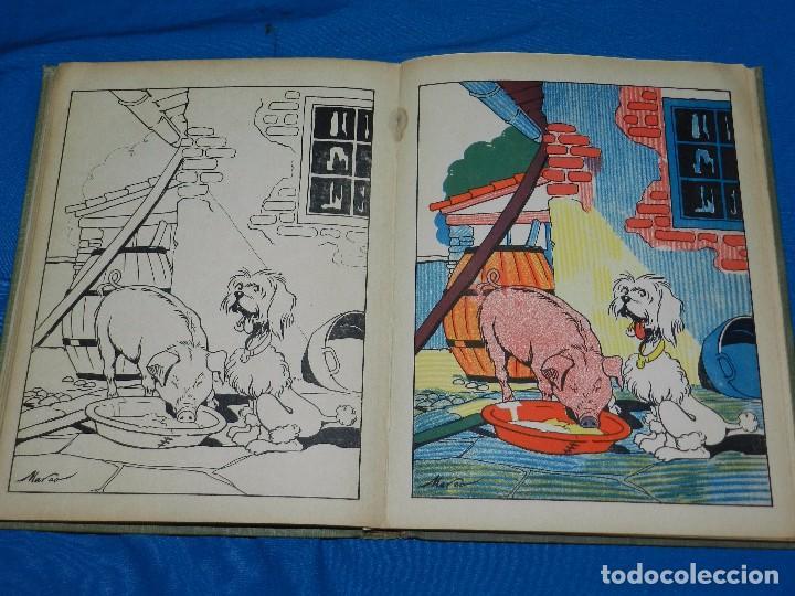 Tebeos: (M) LIBRO ALBUM DE PINTURAS INFANTILES EDT SATURNINO CALLEJA , MADRID , CONTIENE 8 NUMEROS - Foto 9 - 102814275