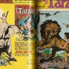 Tebeos: TOMO TARZAN : TOUTAIN EDITOR (1979) + HITPRESS (1979) + NOVARO (1974 -75). Lote 40063953