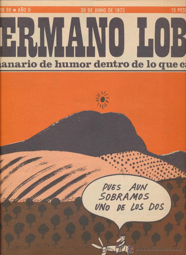 HERMANO LOBO. LOTE DE 8 EJEMPLARES: 42,43,45,47,52,70,78 Y 93. (Tebeos y Comics - Tebeos Otras Editoriales Clásicas)