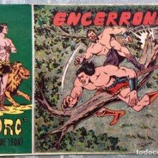 Tebeos: TORG HIJO DE LEON NUMERO 37. ORIGINAL. ED. ANDALUZA 1960. ENCERRONA. DIBUJANTE ROLDAN. Lote 165096786