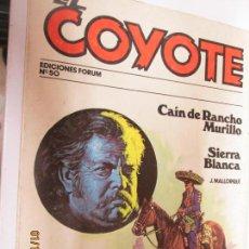 Tebeos: EL COYOTE EDICIONES FORUM Nº 50 CAIN DE RANCHO MURILLO , SIERRA BLANCA . Lote 147238894