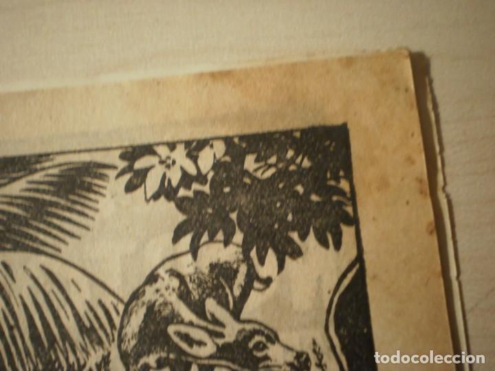 Tebeos: Nuevo Coyote - Almanaque 1953 - Foto 6 - 236578055
