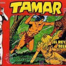 Tebeos: TAMAR TORAY 1961 LOTE DE 179 TEBEOS APAISADOS. Lote 24137065