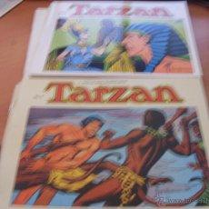 Tebeos: TARZAN LOTE COLECCION COMPLETA . EDGAR RICE BURROUGHS (ED. B.O.) (CLA6) . Lote 44441487