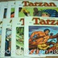 Tebeos: TARZAN ( EDGAR RICE BURROUGHS & RUSS MANNING ) COLECCION COMPLETA, 10 LIBROS APAISADOS. Lote 60798427