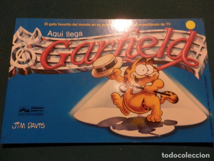 Tebeos: GARFIELD - LOTE DE 6 COMICS DE JIM DAVIS - Nº 1 + 2 + 4 + 5 + AQUÍ LLEGA GARFIELD - Foto 2 - 90269708