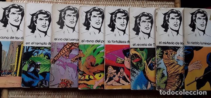 TARZAN - EDGAR RICE BARROUGHS - COLECCION COMPLETA - EDITORIAL NOVARO (Tebeos y Comics - Tebeos Colecciones y Lotes Avanzados)
