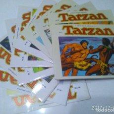 Tebeos: TARZAN 10 TOMOS COLECCIÓN COMPLETA. RUSS MAINNING. EDGAR RICE BURROUGHS. EDICIONES B.O.. Lote 165965520
