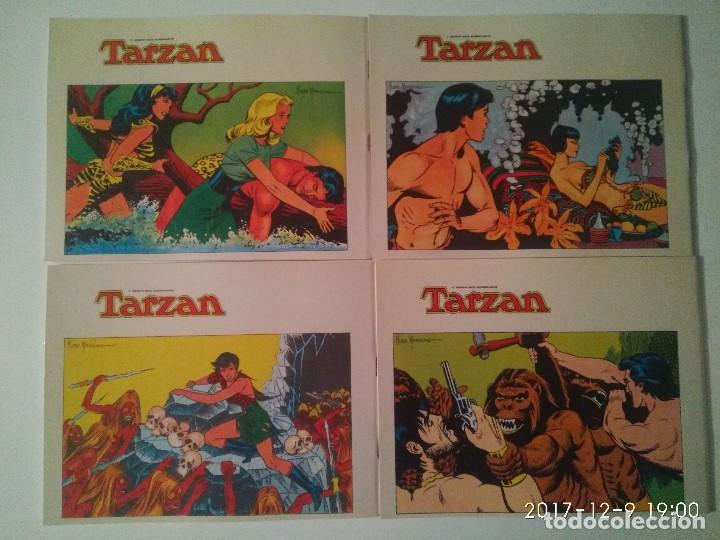 Tebeos: Tarzan 10 tomos Colección completa. Russ Mainning. Edgar Rice Burroughs. Ediciones B.O. - Foto 9 - 165965520
