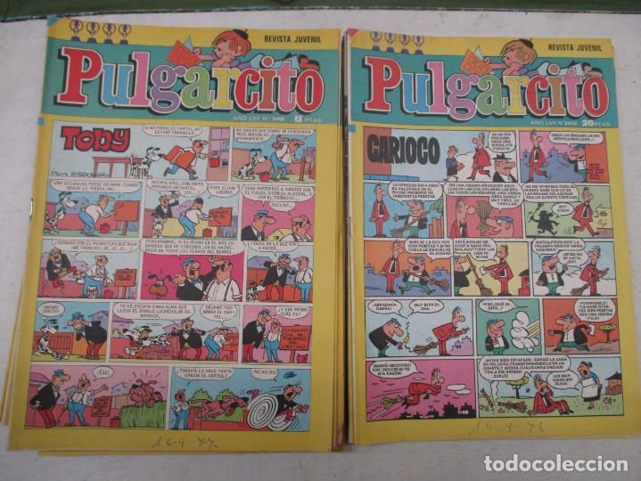 LOTE REVISTA JUVENIL PULGARCITO 19 EJEMPLARES DEL 2400 AL 2499 AMBOS INCLUIDOS - AÑOS 70 - BRUGUERA (Tebeos y Comics - Tebeos Pequeños Lotes de Conjunto)