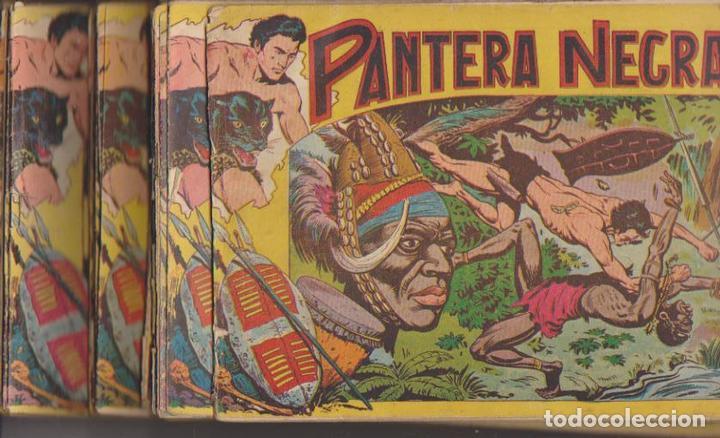 PANTERA NEGRA. MAGA 1956. (DE 1,25) 50 EJEMPLARES. COLECCIÓN A FALTA DEL Nº. 48, 49, 52 Y 54. CONSER (Tebeos y Comics - Tebeos Colecciones y Lotes Avanzados)