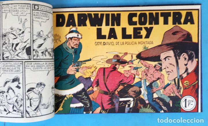 Tebeos: COLECCION DAVID DE LA POLICIA MONTADA , COMPLETA , ENCUADERNADA , 1 AL 16 , VALENCIANA , ORIGINAL - Foto 3 - 138054270