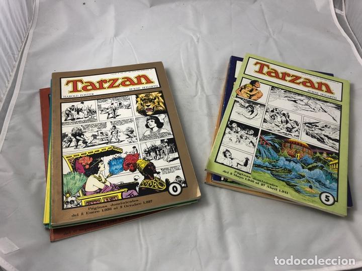 COLECCION COMPLETA. TARZAN 8 NUMEROS. HAROLD FOSTER - BURNE HOGARTH. (Tebeos y Comics - Tebeos Colecciones y Lotes Avanzados)