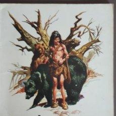 Tebeos: EL PEQUEÑO SALVAJE (1975) EDICIONES AMAIKA, POR JOSE ORTIZ - VER FOTOS. Lote 137914454