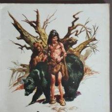 Tebeos: EL PEQUEÑO SALVAJE (1975) EDICIONES AMAIKA, POR JOSE ORTIZ - VER FOTOS Y DESCRIPCIÓN. Lote 194270093