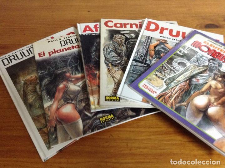 DRUUNA 6 TOMOS SERPIERI (Tebeos y Comics - Tebeos Colecciones y Lotes Avanzados)