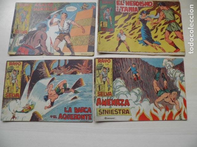 LOTE DE EL RAYO DE LA SELVA (Tebeos y Comics - Tebeos Colecciones y Lotes Avanzados)