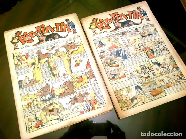 Tebeos: RIN-TIN-TIN (1ª EPOCA). ¡¡ UN LOTE HISTORICO !! - Foto 7 - 205753200