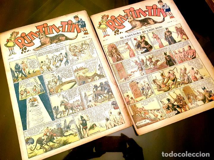 Tebeos: RIN-TIN-TIN (1ª EPOCA). ¡¡ UN LOTE HISTORICO !! - Foto 9 - 205753200