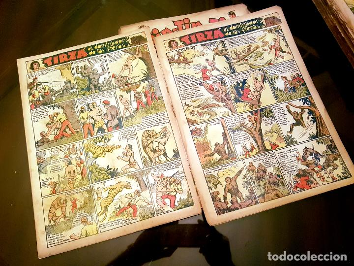 Tebeos: RIN-TIN-TIN (1ª EPOCA). ¡¡ UN LOTE HISTORICO !! - Foto 13 - 205753200