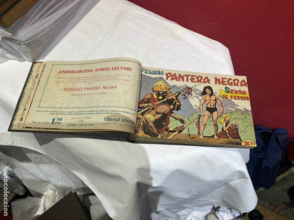 Tebeos: PANTERA NEGRA . Coleccion de 48 ejemplares originales del número 125 a 173 encuadernados en un tomo - Foto 2 - 243276655