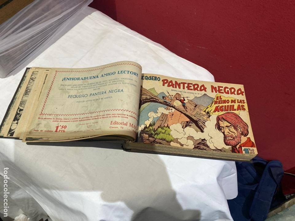Tebeos: PANTERA NEGRA . Coleccion de 48 ejemplares originales del número 125 a 173 encuadernados en un tomo - Foto 4 - 243276655
