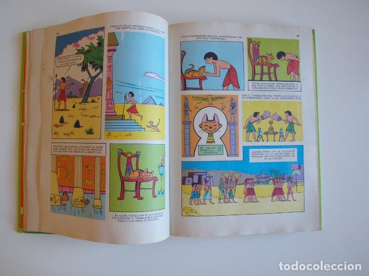 Tebeos: PELÍCULAS WALT DISNEY - TOMO 18 - COLECCIÓN JOVIAL - EDICIONES RECREATIVAS E.R.S.A. 1982 - Foto 6 - 205511447