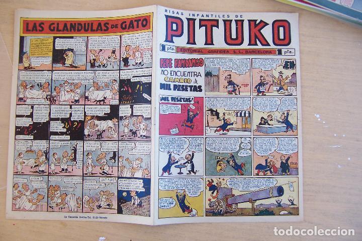 GRAFIDEA, PITUKO Nº 2 Y ULTIMO (Tebeos y Comics - Grafidea - Otros)