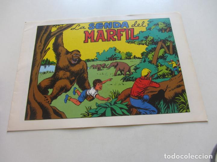 CHISPITA 4ª AVENTURA. Nº 4. LA SENDA DEL MARFIL AMBROS GRAFIDEA REEDICIÓN CX71 HJJ (Tebeos y Comics - Grafidea - Chispita)