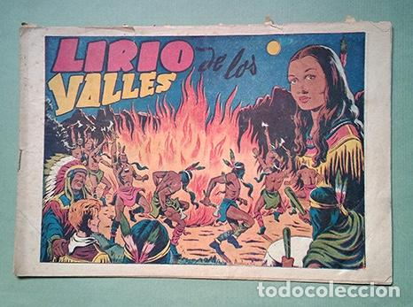 CHISPITA. SEGUNDA AVENTURA Nº 13: LIRIO DE LOS VALLES (Tebeos y Comics - Grafidea - Chispita)