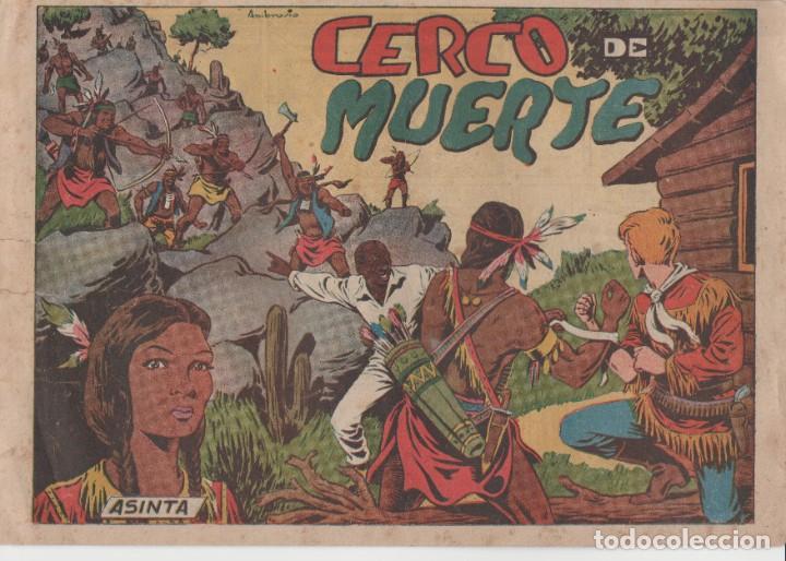 CHISPITA (2ª AVENTURA) Nº 3 (EDITORIAL GRAFIDEA) (Tebeos y Comics - Grafidea - Chispita)