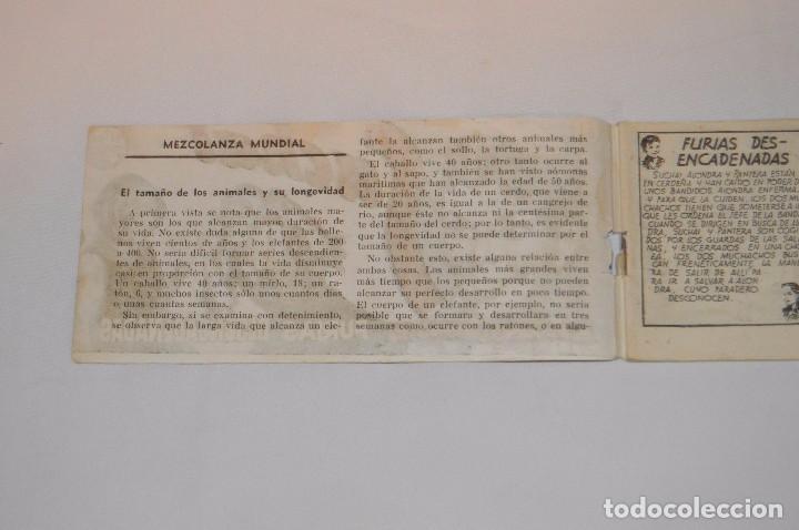 Tebeos: SUCHAI - EL PEQUEÑO LIMPIABOTAS - Nº 83 - MUY ANTIGUO - MIRA LAS FOTOS PARA MÁS DETALLE - Foto 3 - 63642555