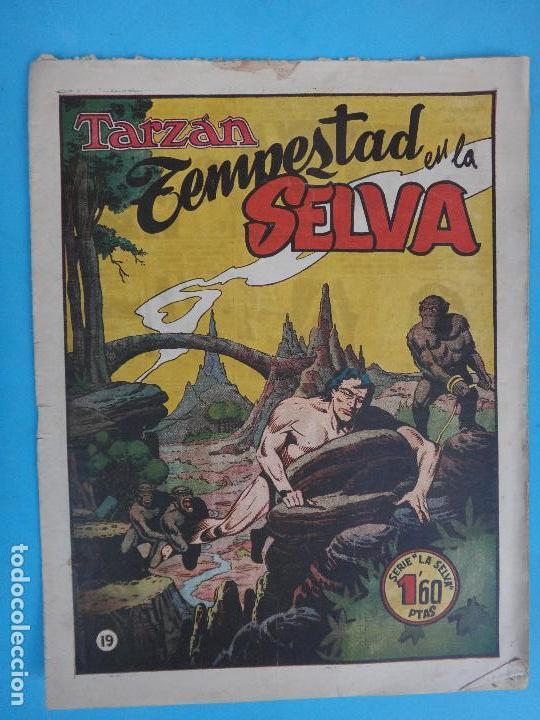 TARZAN , TEMPESTAD EN LA SELVA , Nº 19, HISPANO AMERICANA , ORIGINAL , CL (Tebeos y Comics - Hispano Americana - Tarzán)