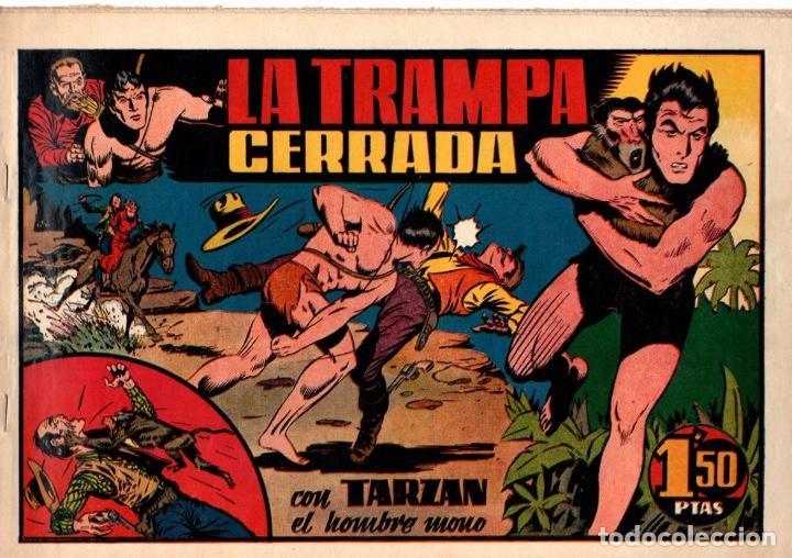 LA TRAMPA CERRADA CON TARZAN EL HOMBRE MONO. 1,50 PTAS. ORIGINAL. AÑOS 40 (Tebeos y Comics - Hispano Americana - Tarzán)