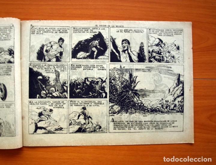 Tebeos: Tarzán - nº 25, El jardin de la muerte - Editorial Hispano Americana 1942 - Tamaño 215x31 - Foto 4 - 98108291