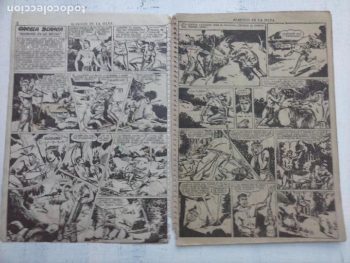 Tebeos: GACELA BLANCA ORIGINAL 1949 - LOTE NºS - 2,3,5,6,7,8,9,10,11,12,13,14,15,16,17,18,19,20,21 - Foto 38 - 107829823