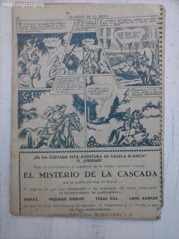 Tebeos: GACELA BLANCA ORIGINAL 1949 - LOTE NºS - 2,3,5,6,7,8,9,10,11,12,13,14,15,16,17,18,19,20,21 - Foto 45 - 107829823